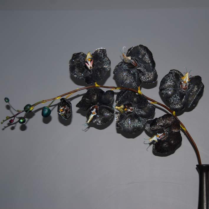 orchidea-falenopsis-mayri-me-7-anthi