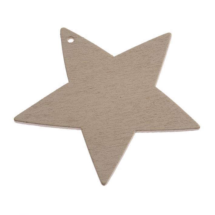 asteri-ksilino-8cm