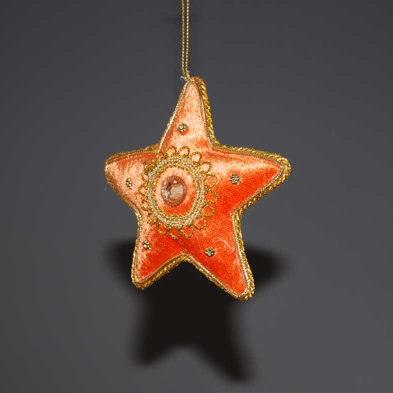 asteri-portokali-10cm