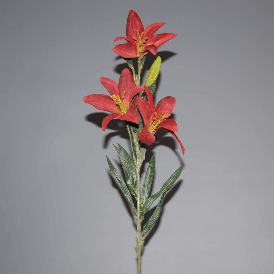 lilium-red